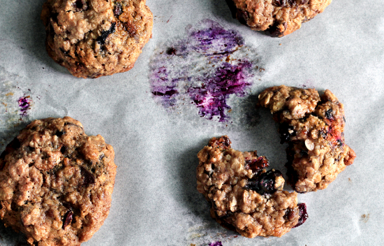 blueberry oatmeal cookie