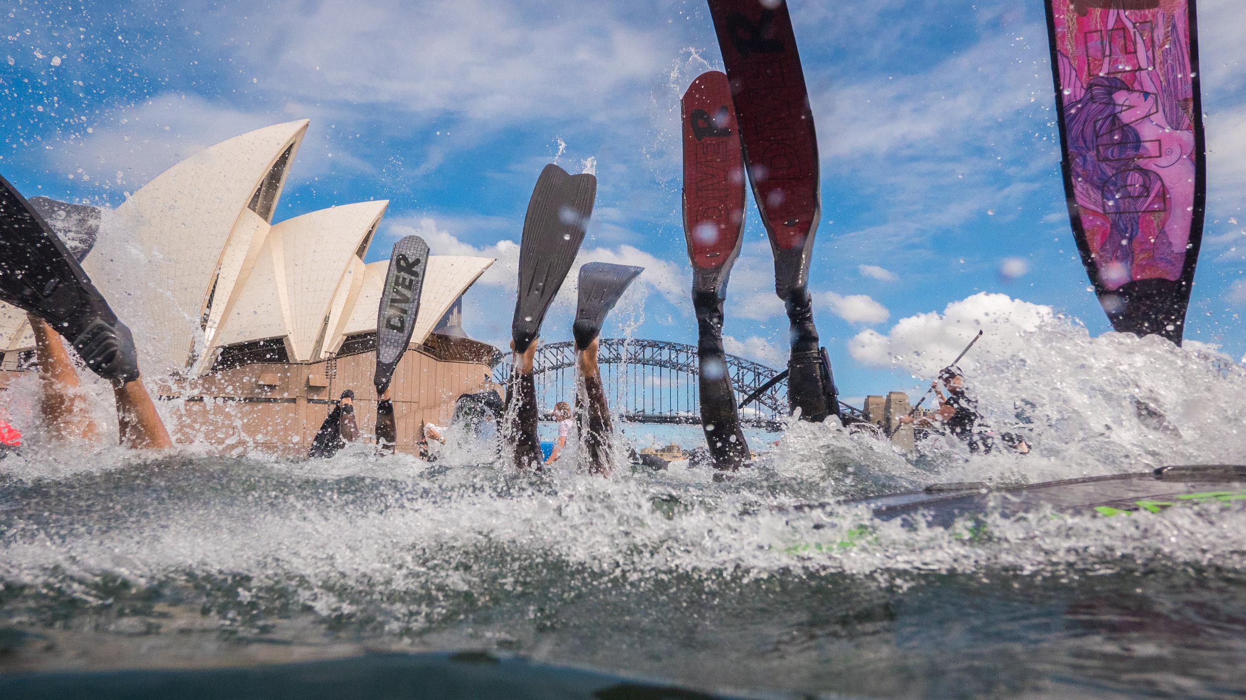Sydney Harbour-1610348.jpg