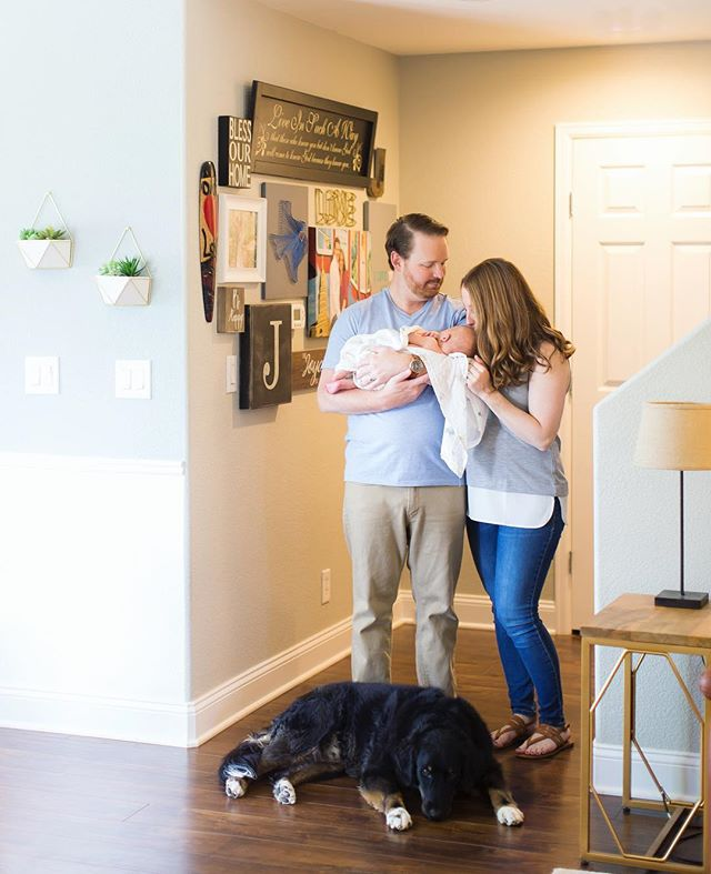 finally a family of 4!  Congrats to this beautiful couple and their sweet pup! @kmulhernphotography • • • #photographingfamilies #dogparentsfirst #travelingphotographer #denverfamilyphotography #denverfamilies #denverfamilyphotographer #familyphotography #yourfamilyisworthit #yourfamilyisart #capturelifesmoments #creatememories #makememories #capturelifesevents #lookwherelifecantakeyou #kmulhernphotography #canonphotography #lookslikefilm #magicofchildhood #familyheirlooms #aninvestmentinyourfamily #motherhood #motherhoodmoments #fatherhood #fatherhoodmoments #lookslikefilmkids #beinspired #candidchildhood #colorado #denvercolorado #newbornphotographerdenver