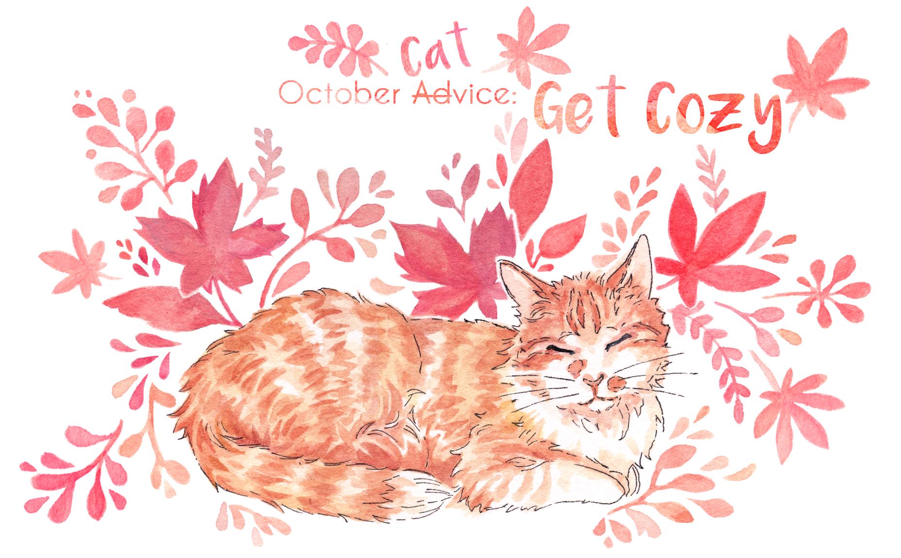 get-cozy-october-catadvice.PNG