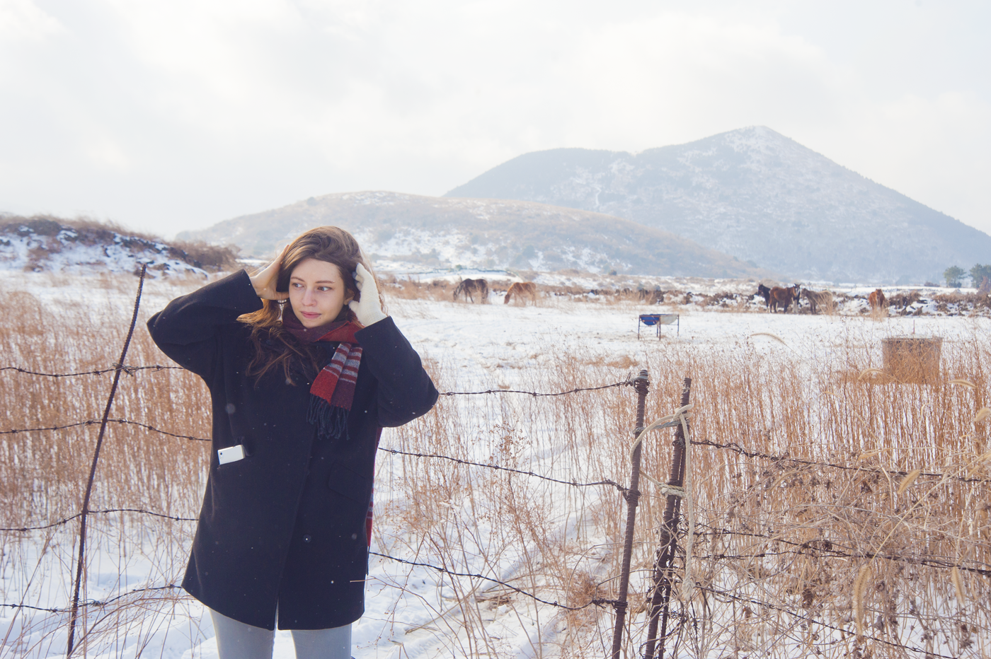 Jeju Island in winter: Travel guide and visual diary by a local. I love the crisp colors and clean air winter brings, and the calm atmosphere all over Jeju. Read on to find tips and inspiration for your own visit to Jeju Island.