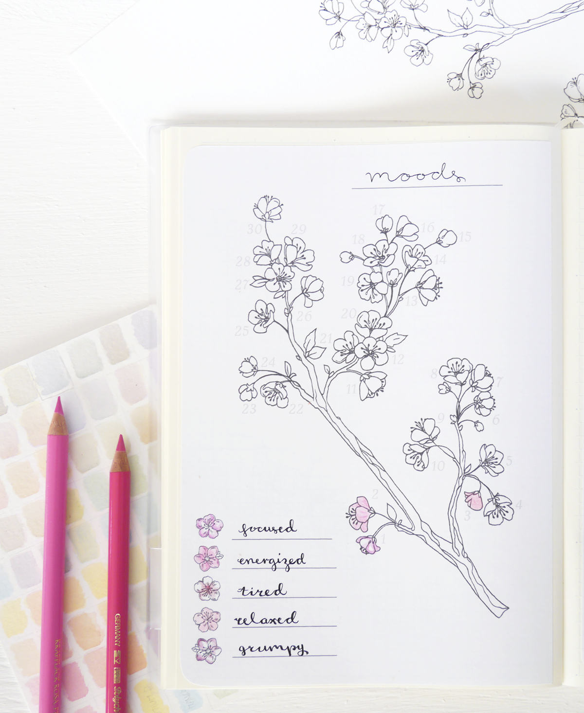 photograph about Bullet Journal Mood Tracker Printable named Spring Bullet Magazine Style and design : Cherry Blossoms evydraws