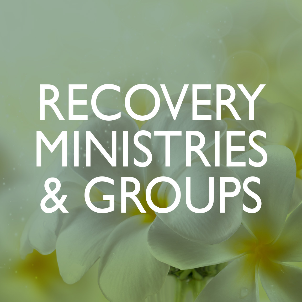 Square_Recovery ministries and groups.jpg