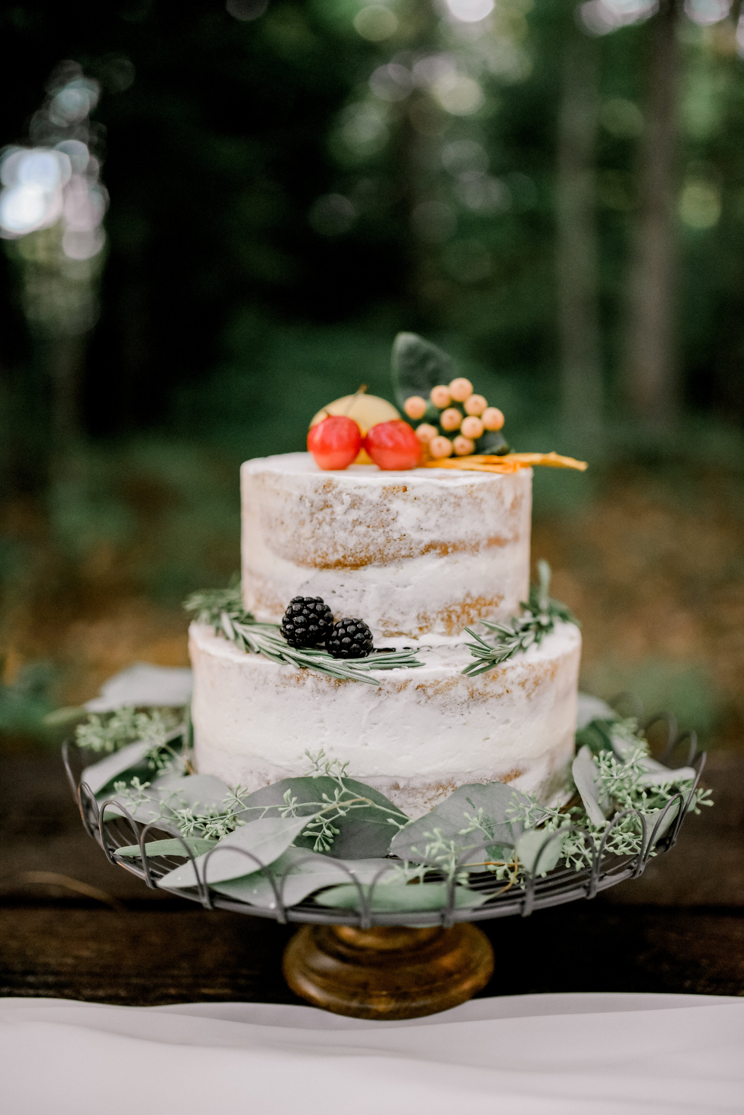 photographer-wedding-red-river-gorge-cake