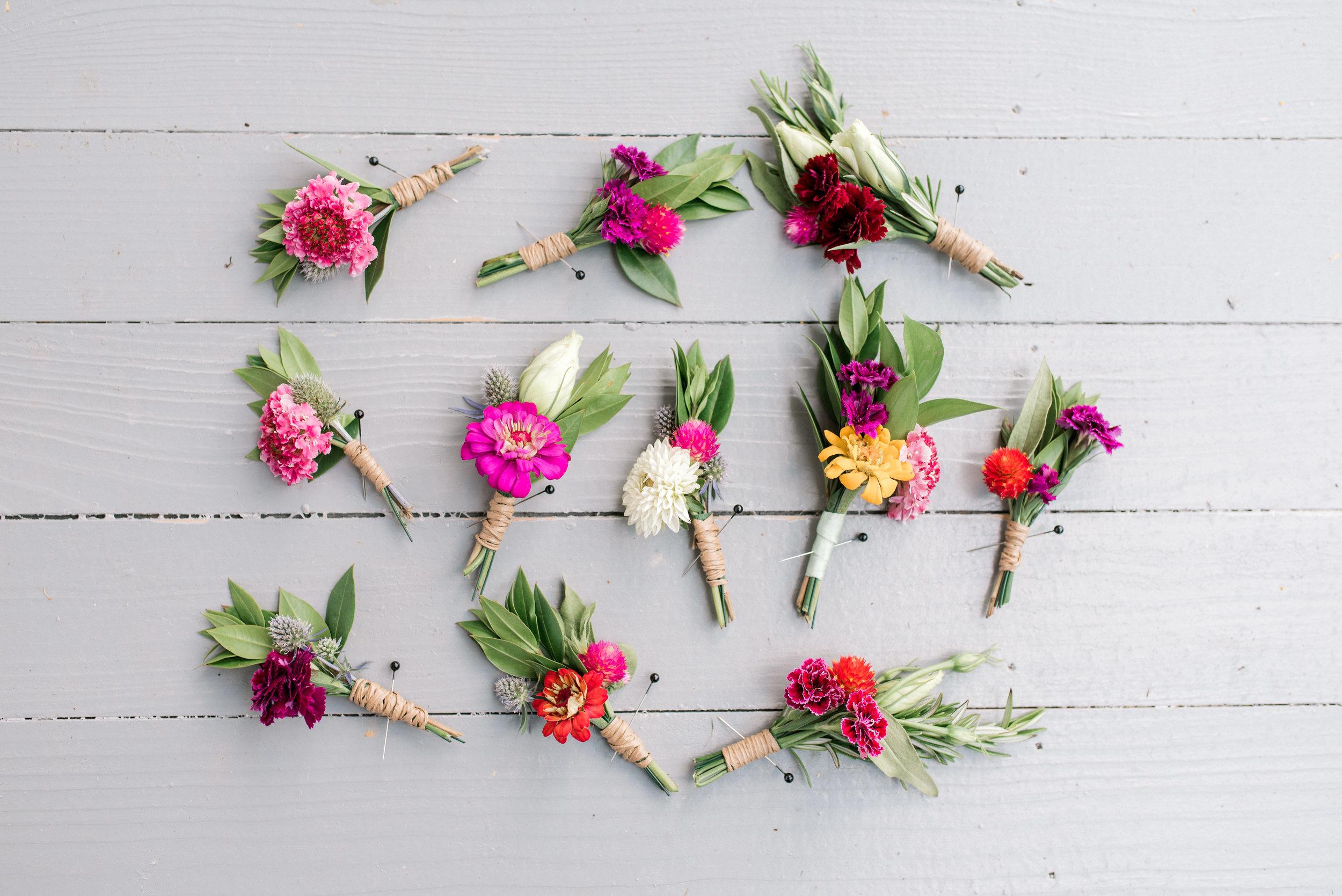 asbury-meadow-bed-and-breakfast-wedding-photographer