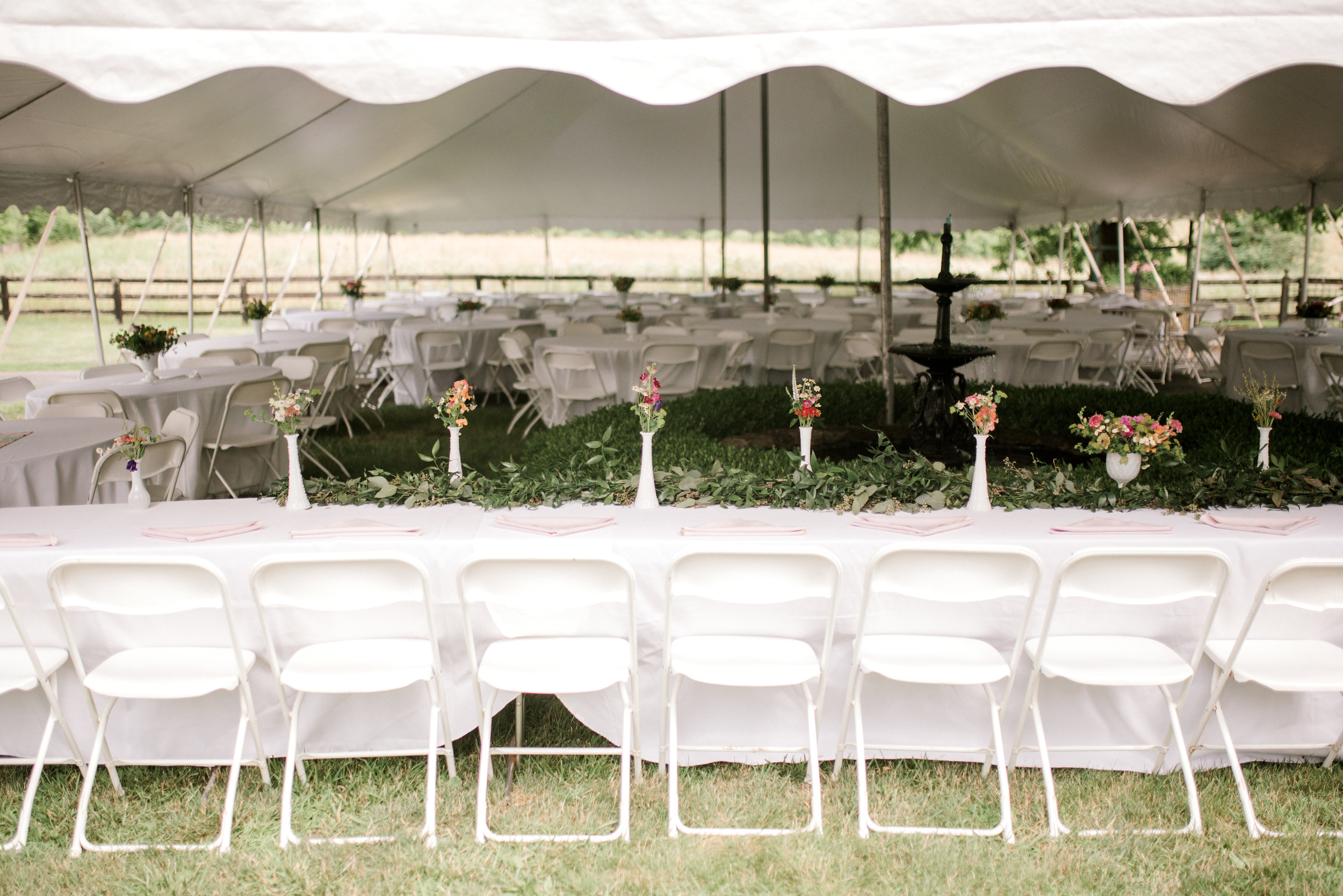 asbury-meadow-bed-and-breakfast-wedding-reception