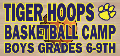 tiger_hoops_summer_camp_banner.jpg