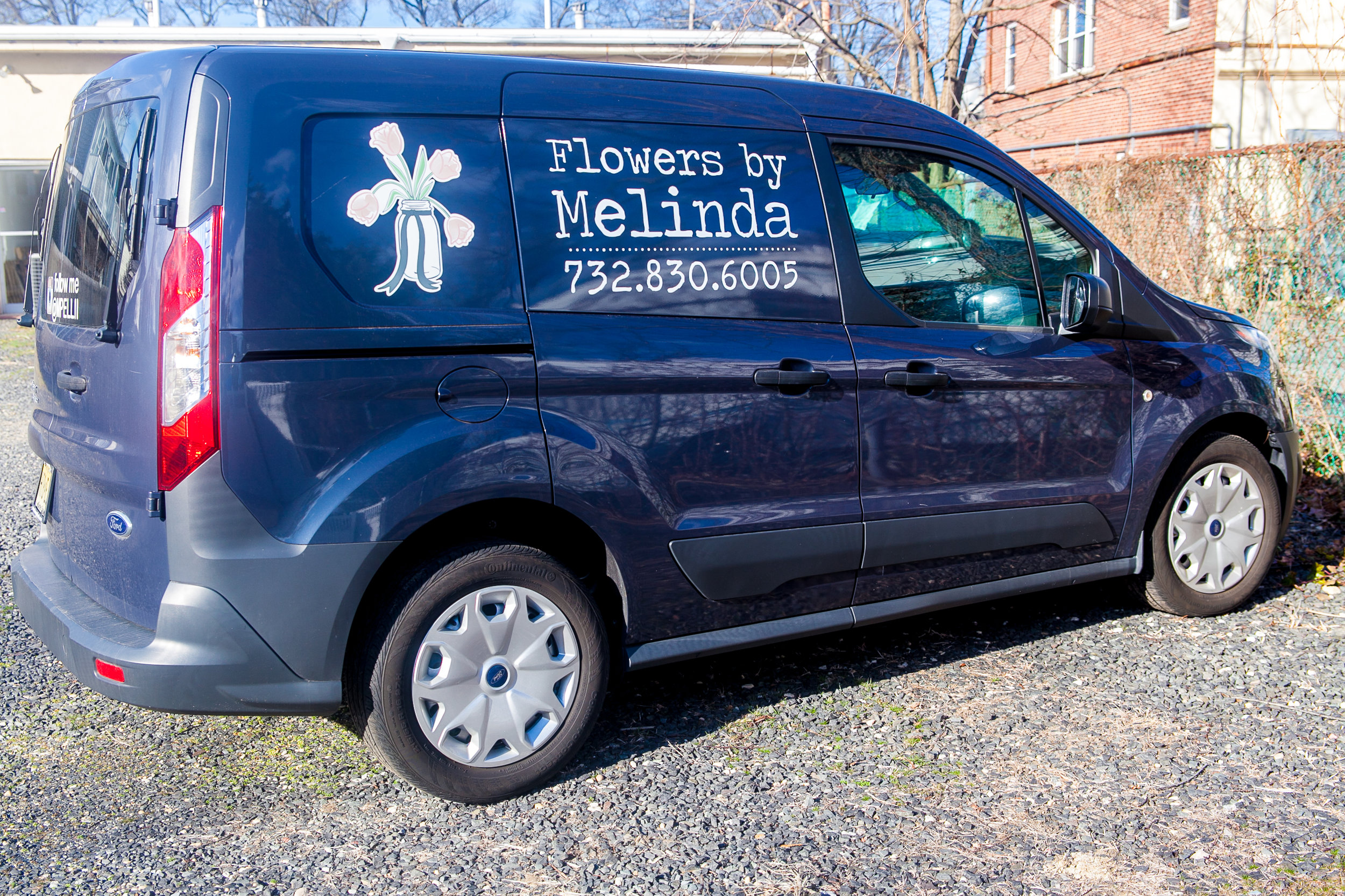 Website-Promo Melinda Flowers 2017-14.JPG