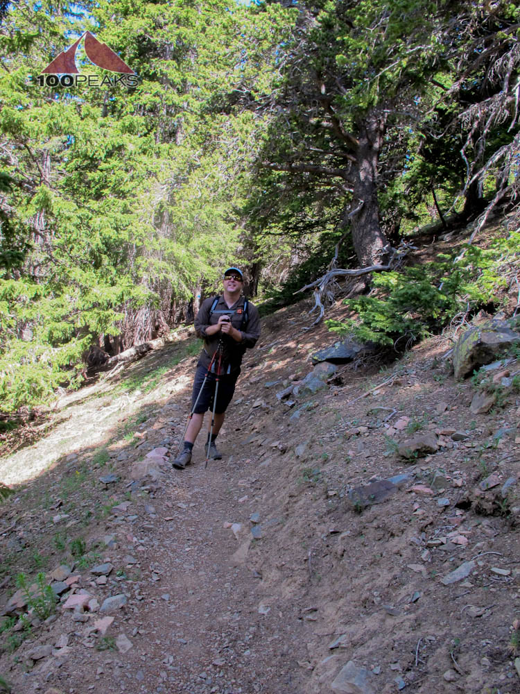 Me, feeling good on the Wheeler Peak Trail