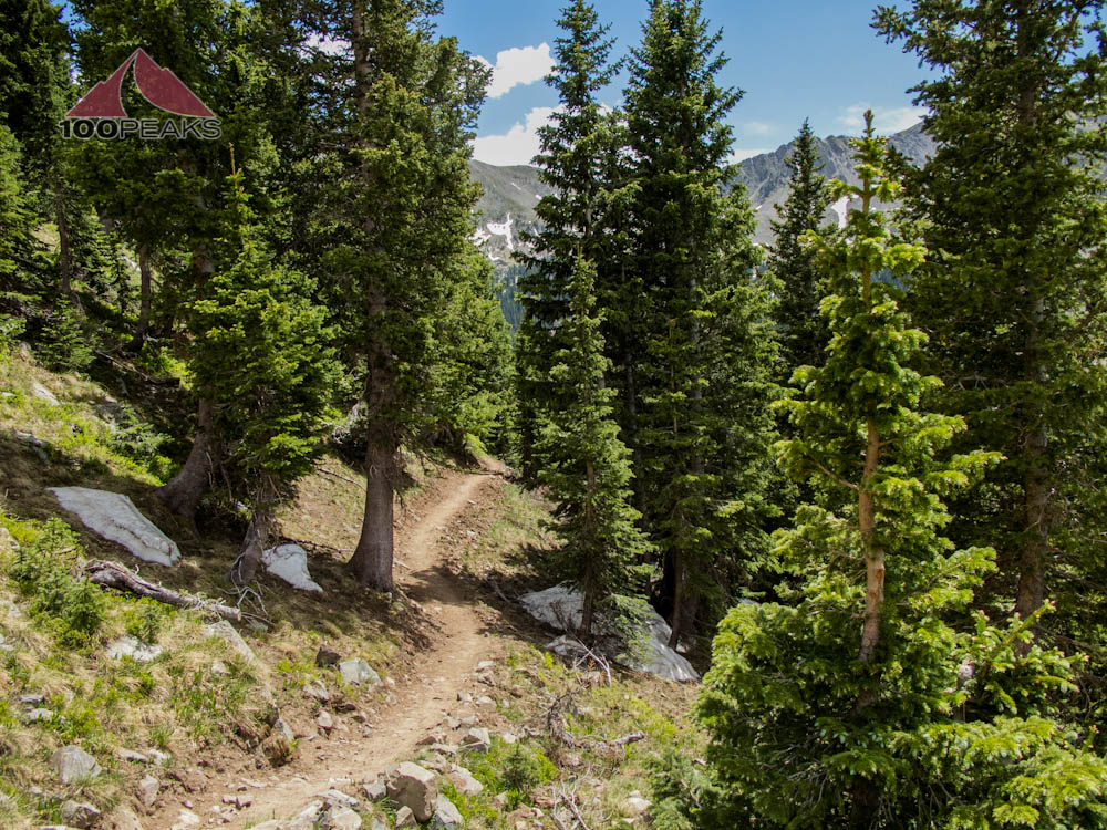 Wheeler Peak Trail