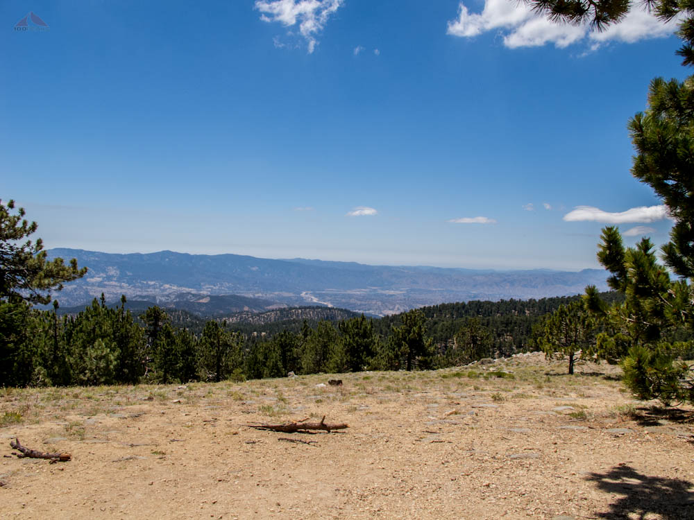 The View from Mount Pinos