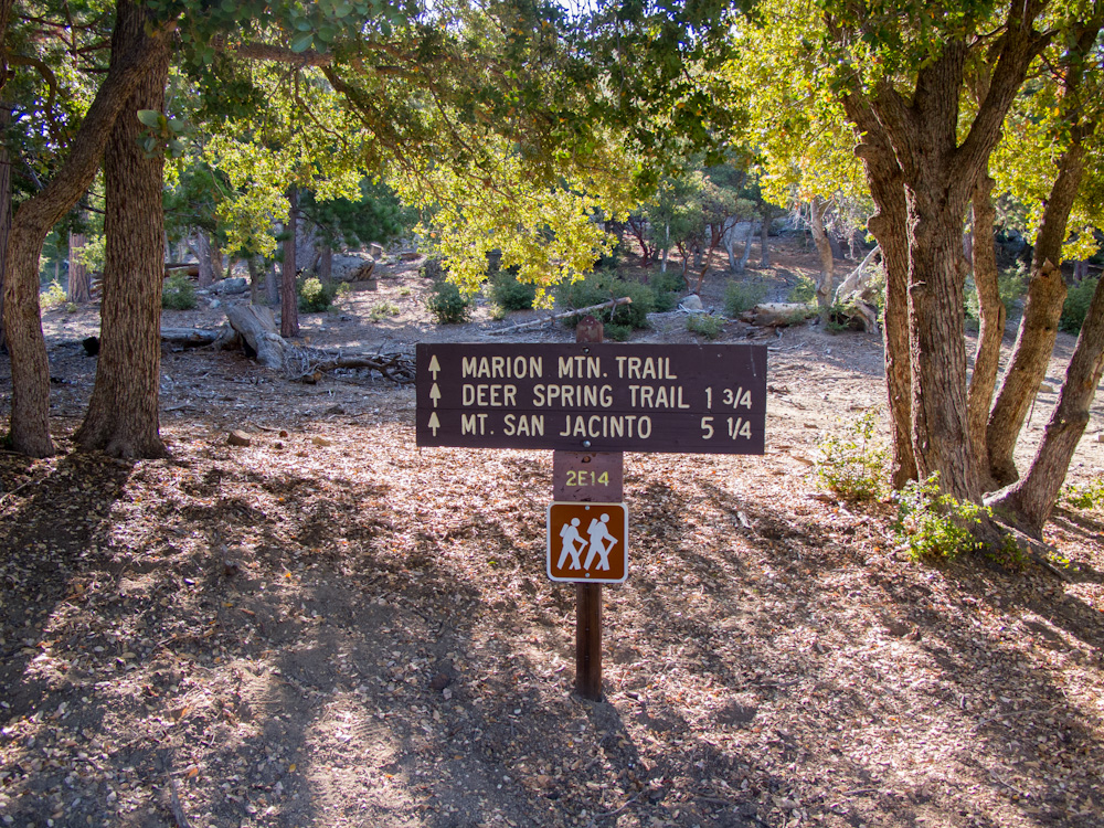 Marion Mountain Trail to San Jacino Peak