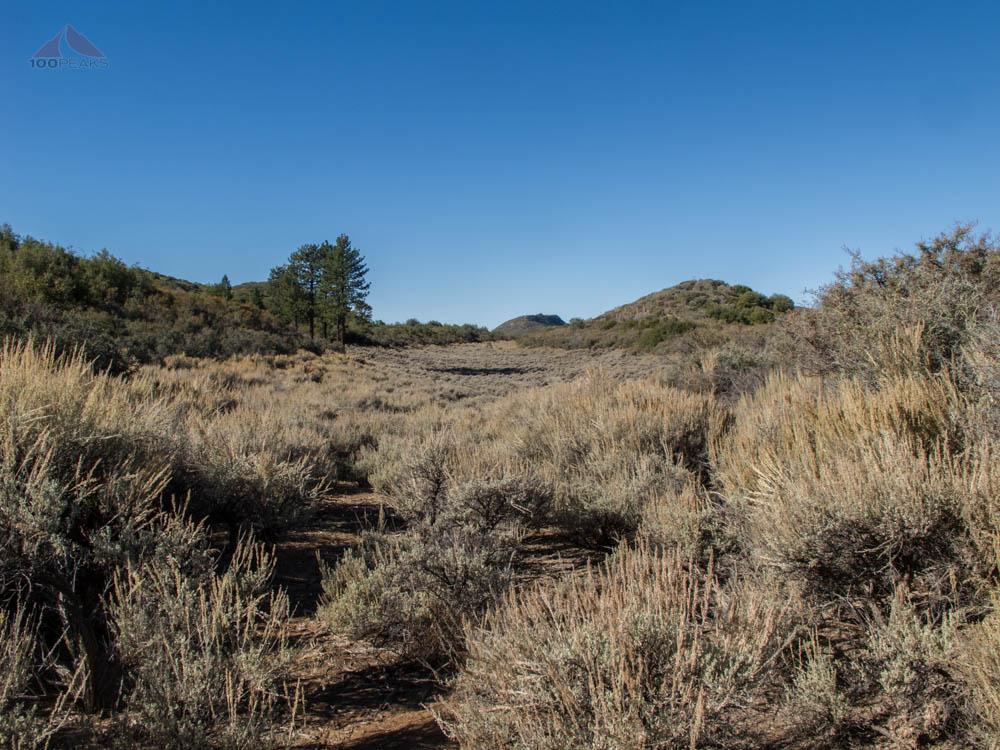 In basin #2 on Dry Lakes Ridge