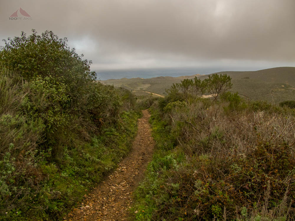 A Peek at the Ocean along the Valencia Peak Trail