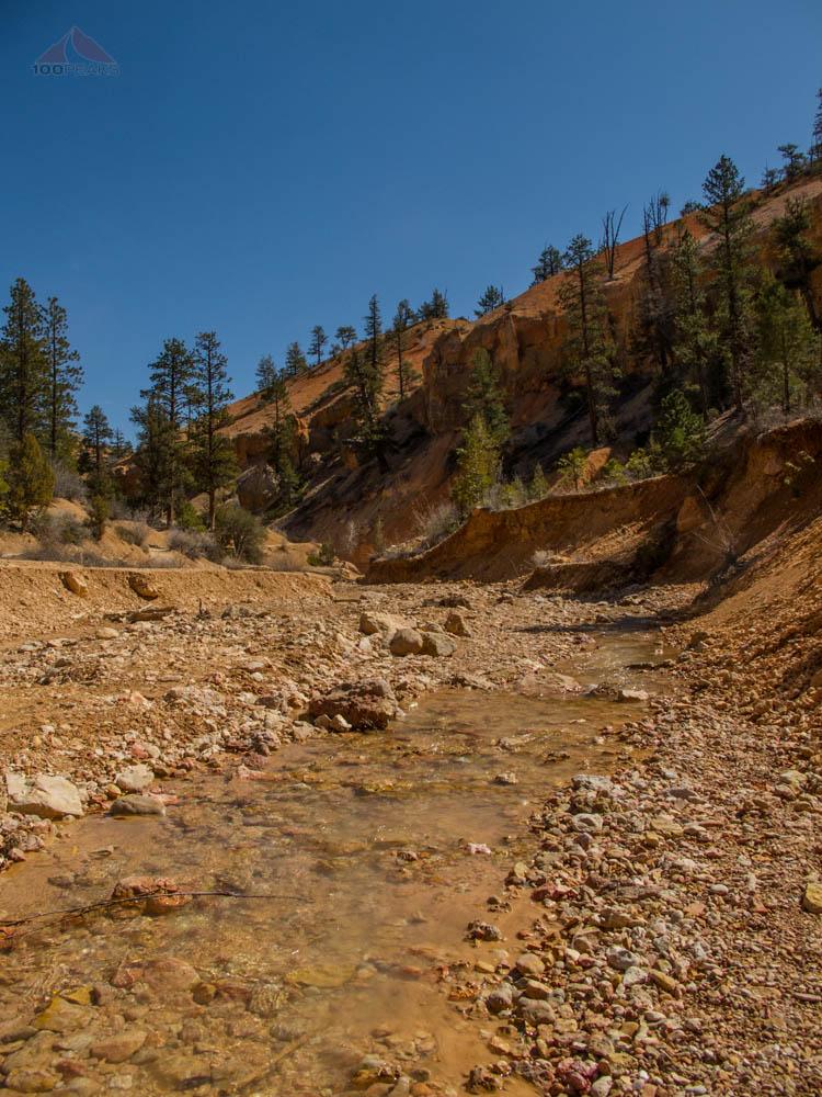Creek near Mossy Cave