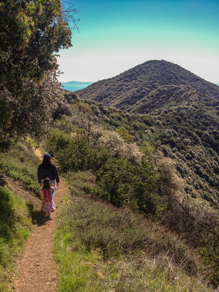Getting closer to Montecito Peak