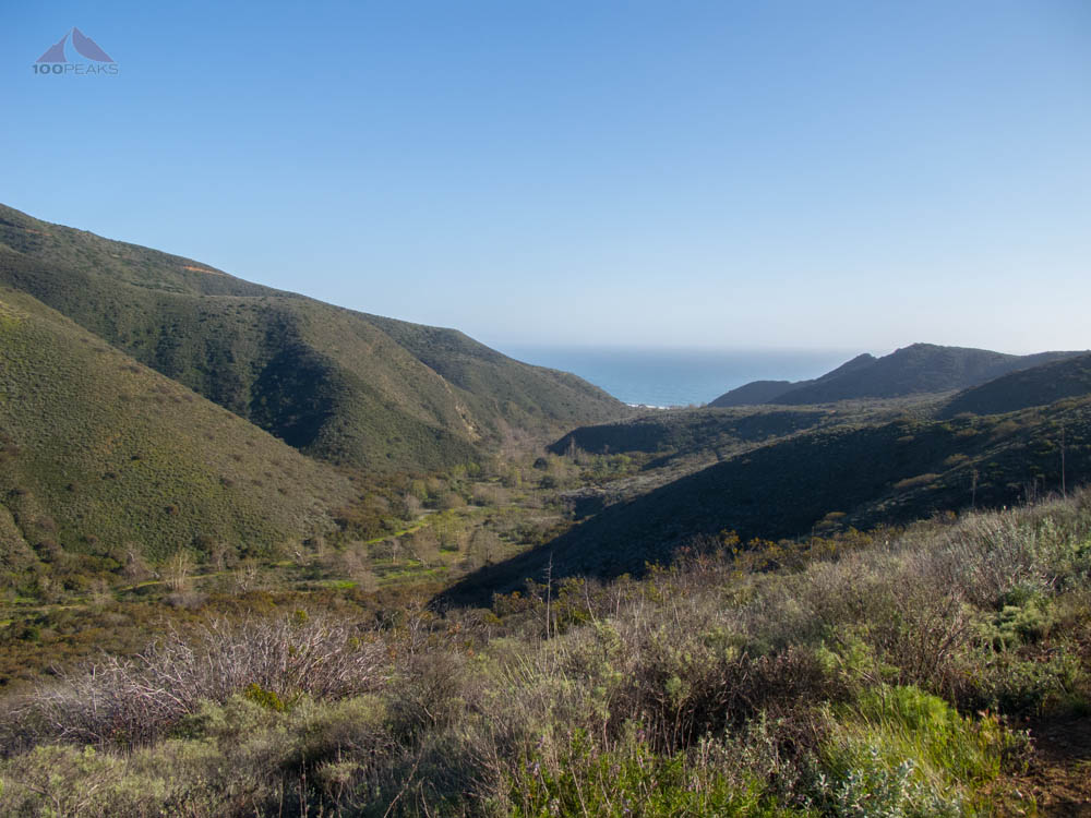 Looking back down Sycamore Canyon from the Fireline Trail