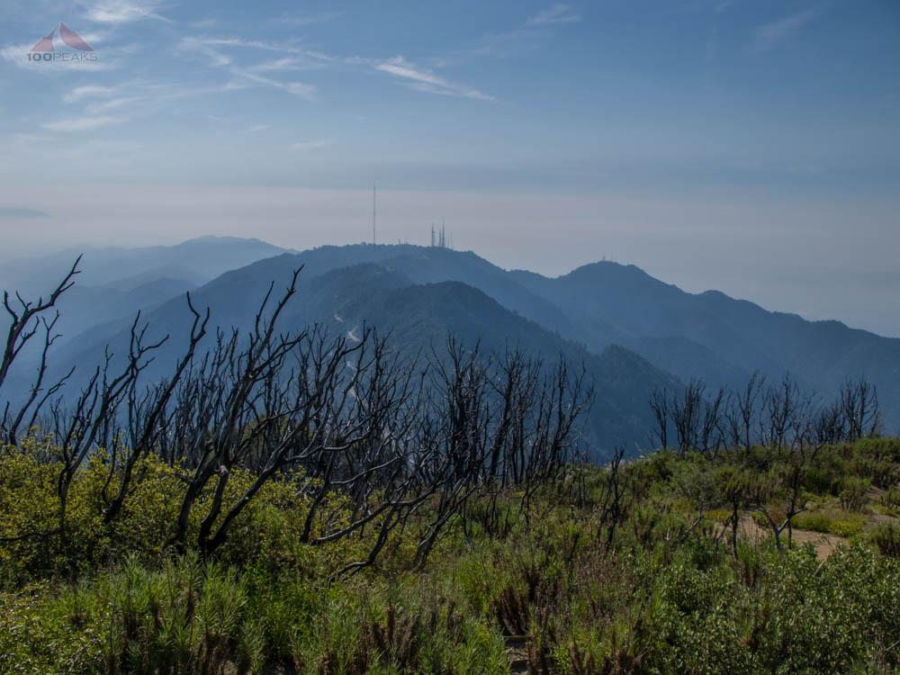 Mount Wilson from San Gabriel Peak