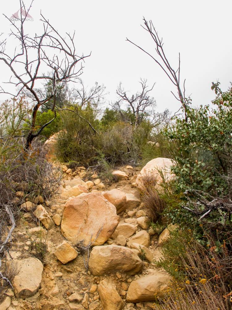 Scrambling up the Arlington Peak Trail