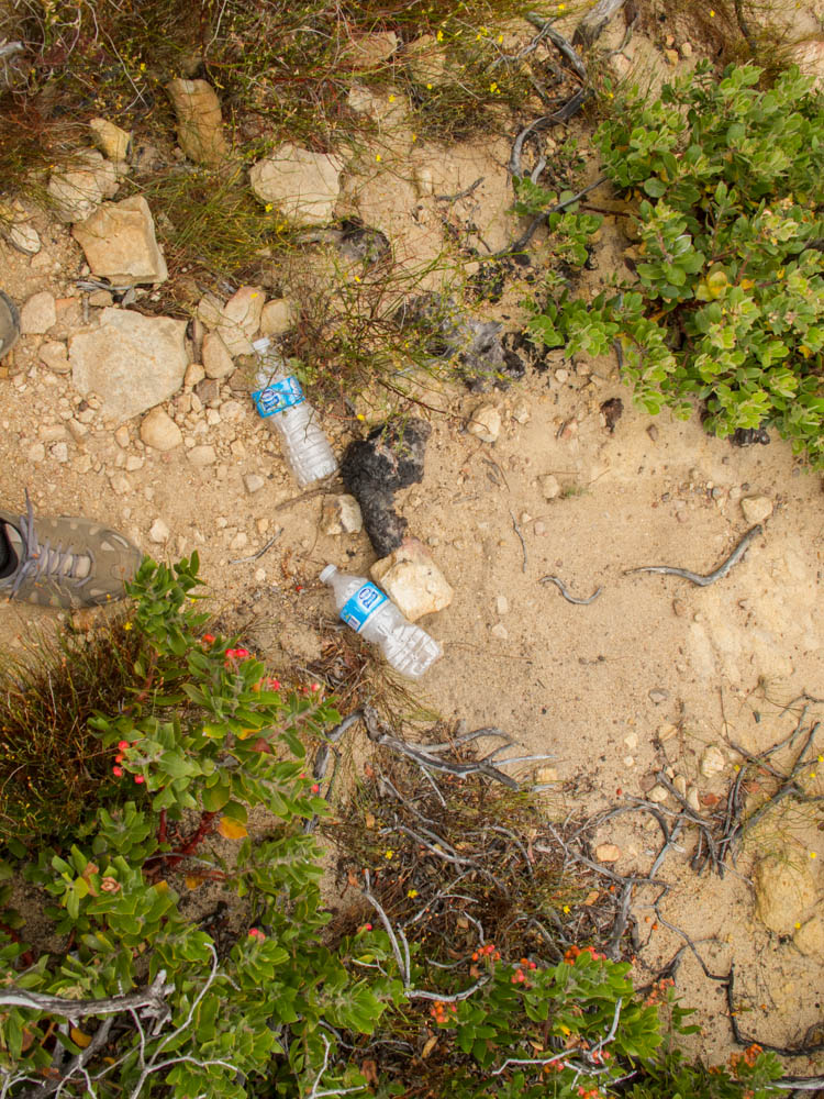 Some of the trash found along the trail
