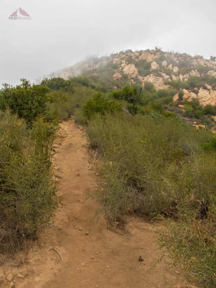 The Arlington Peak Trail