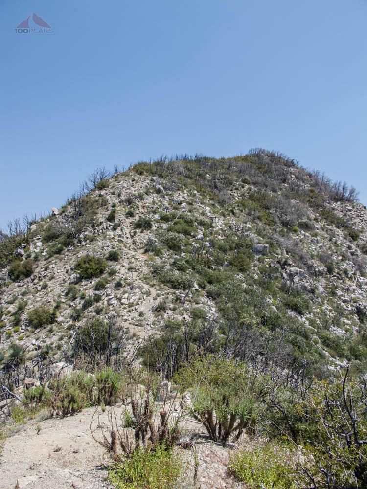 The rough ridge to Mount Markham