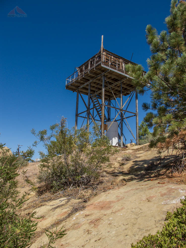 Thorn Point Lookout Tower