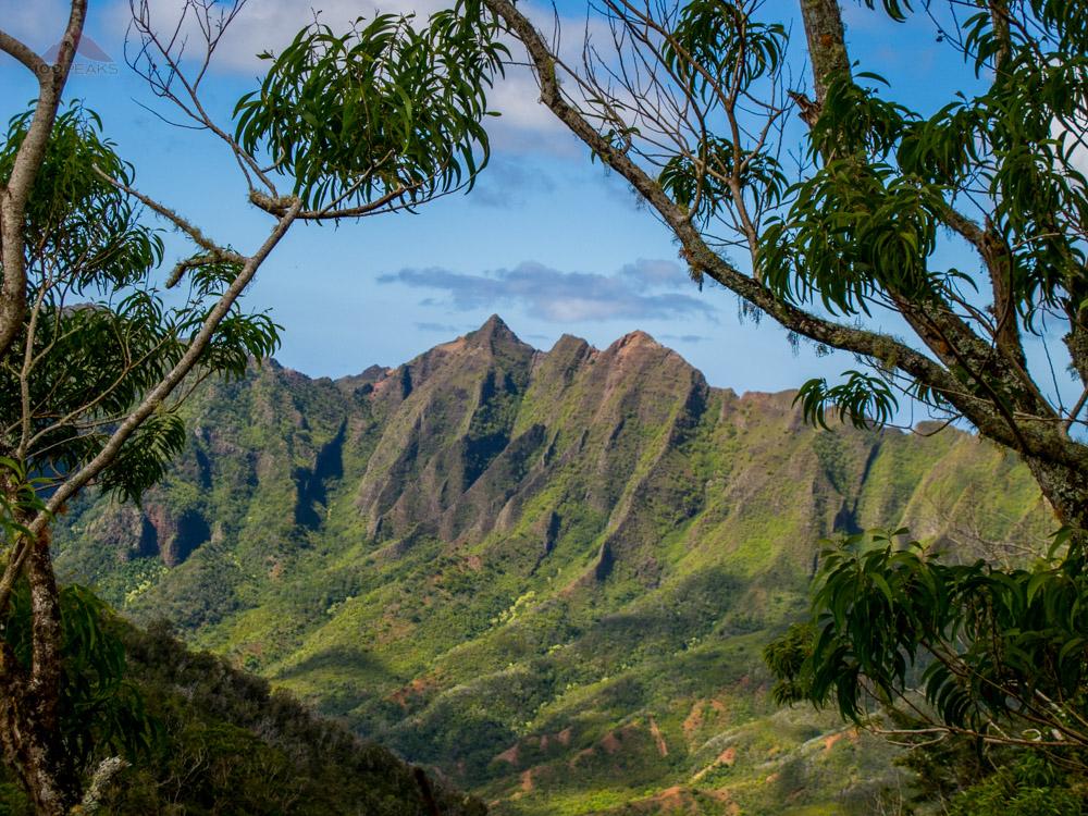 Makua Kea'au Ridge from where I rested on Ka'ala Ridge