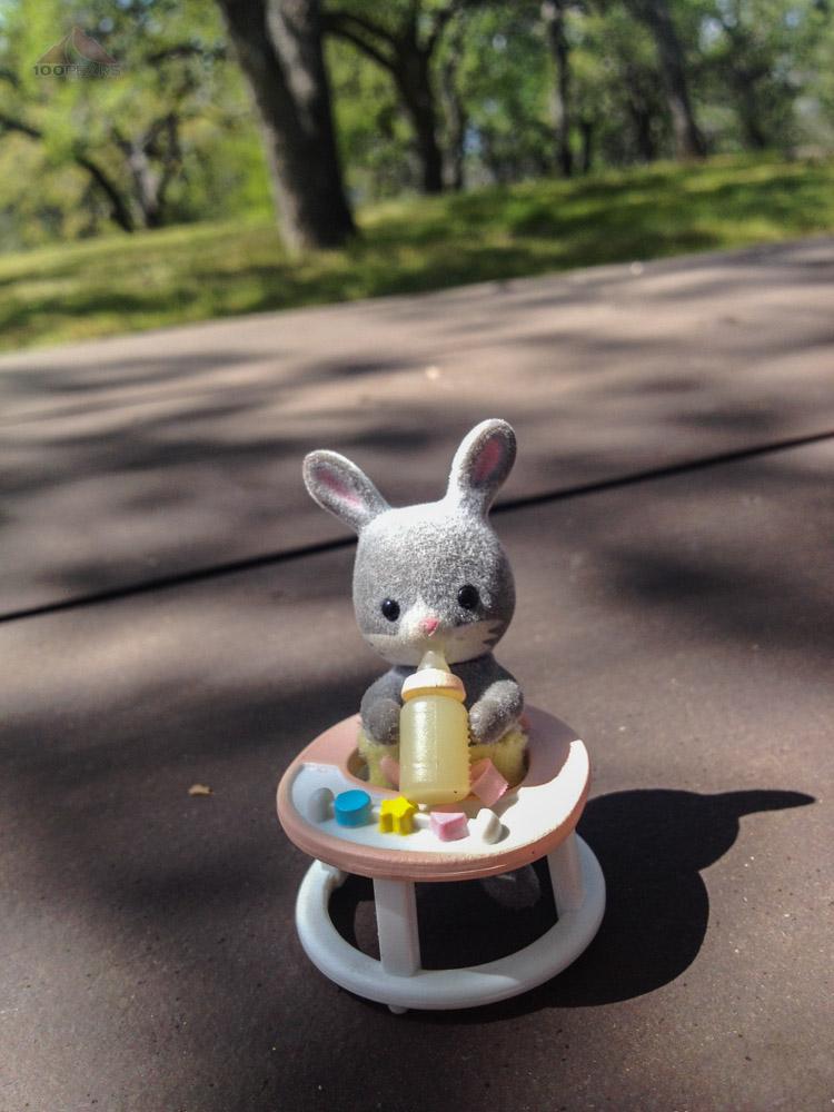 A nice picnic near Figueroa Mountain