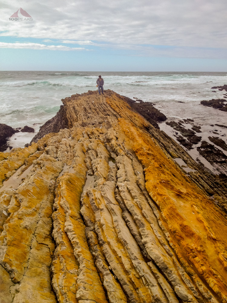 Reamo, at the end of the Earth, Montana De Oro State Park