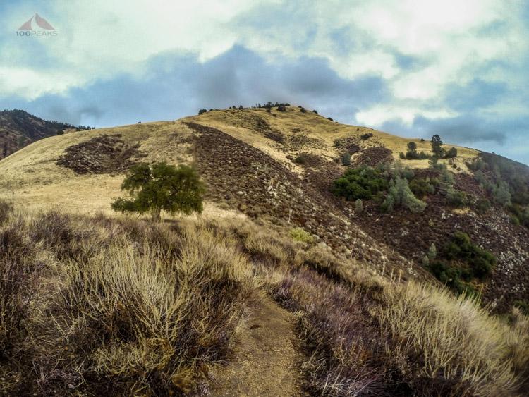 Grass Mountain