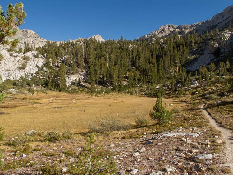 Lovely meadow on the way to Muir Pass