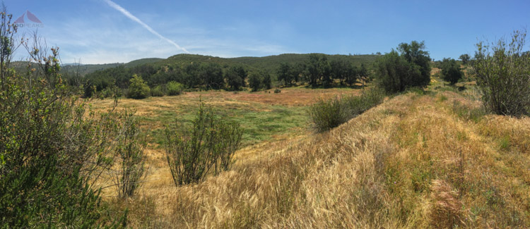 The dry pond below Sunshine Mountain