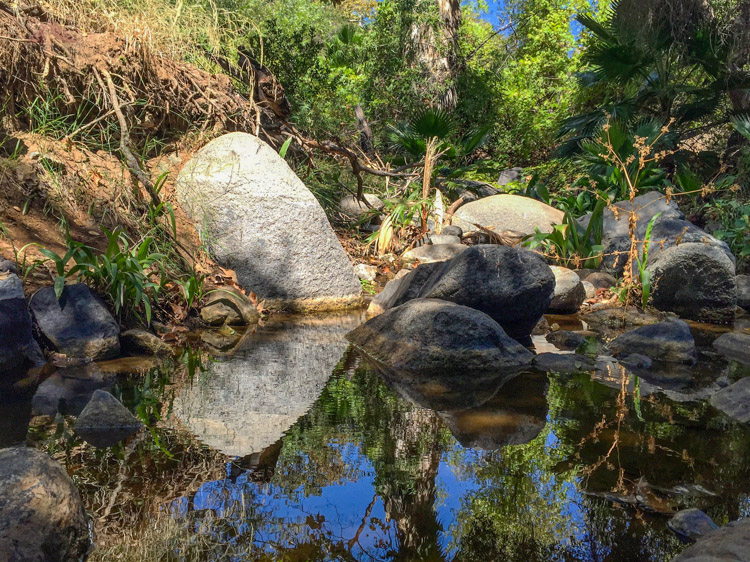 Felicita Creek - The living water