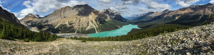 Peyto Lake Pano