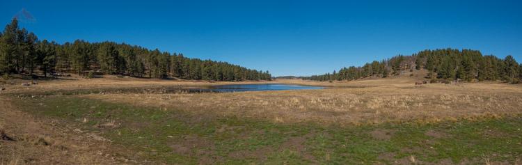 Big Laguna Meadow