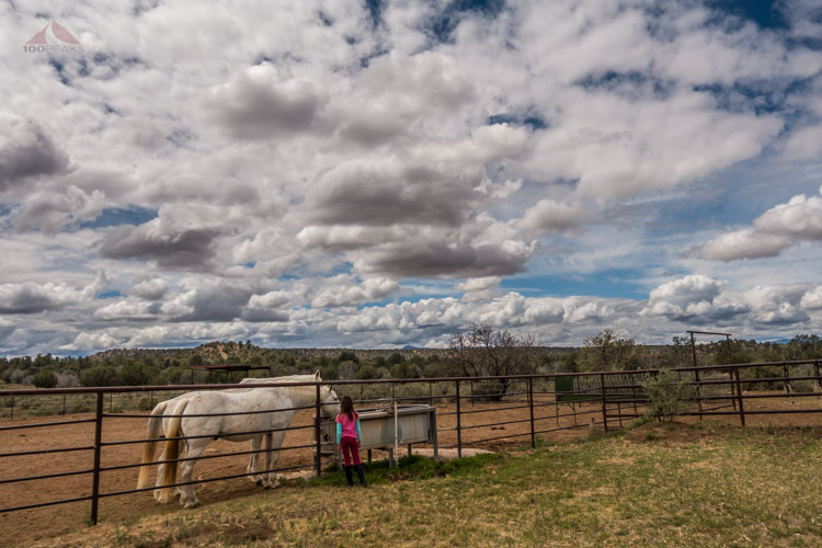 Hanging with horses under a giant sky