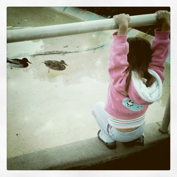 Hanging with Ducks.jpg