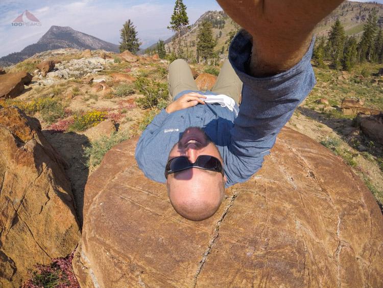 A warm rock always encourages a quick nap