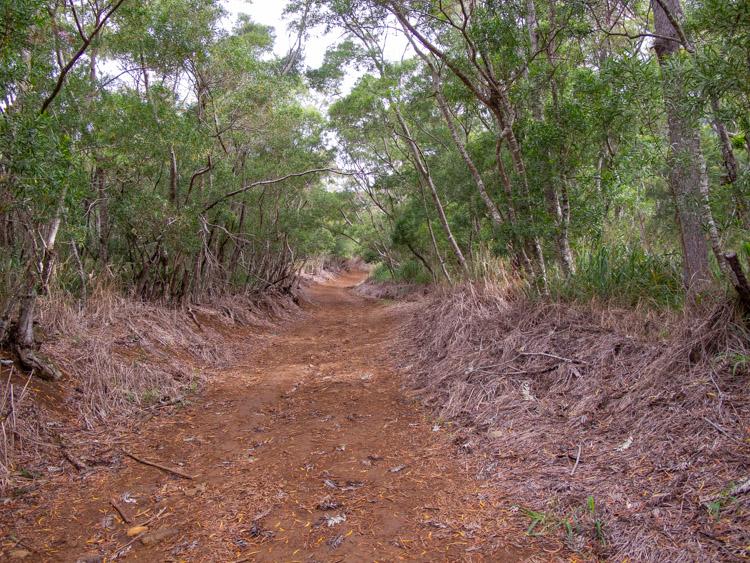 Waianae Valley Trail to Ka'ala