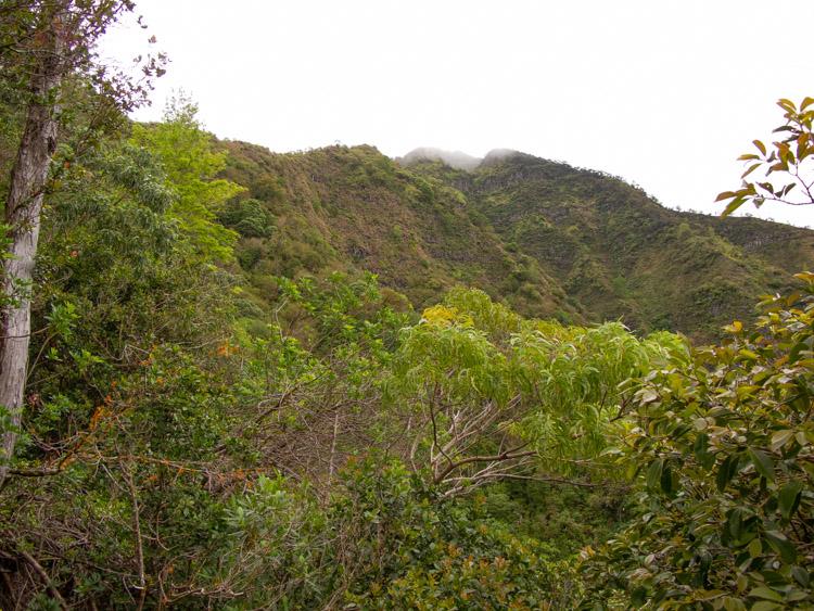 Ridgeline ahead to Ka'ala