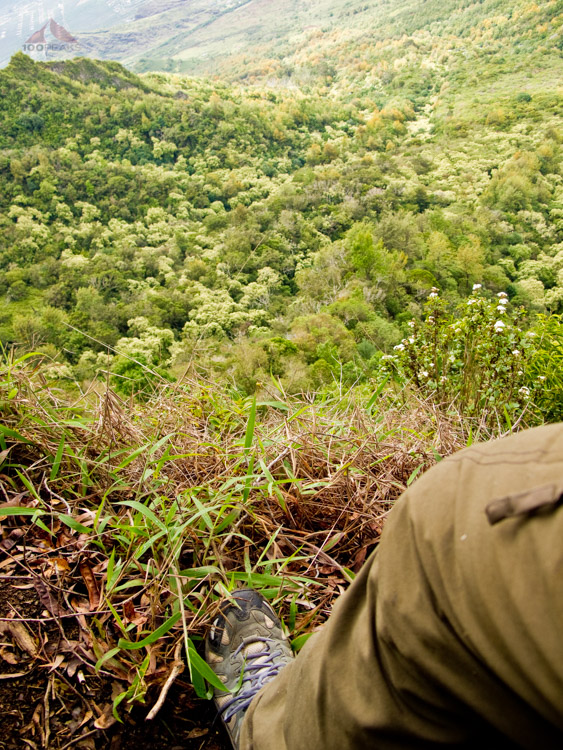 Dropoff on the Ka'ala Ridgeline trail
