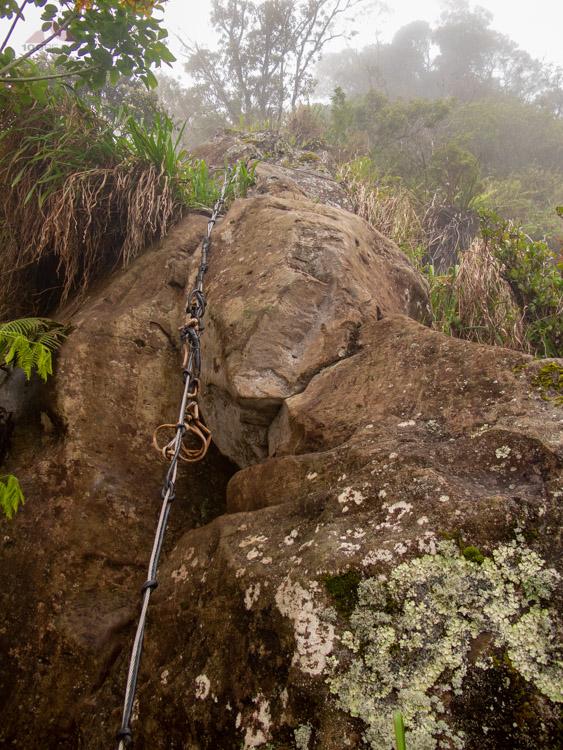 Exposure on the Ka'ala Ridgeline Trail
