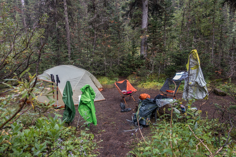 2015 - Helmet Creek, Kootenay NP
