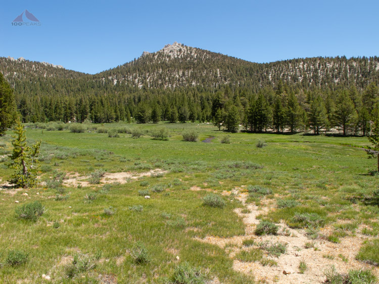 Meadow near Golden Trout Camp