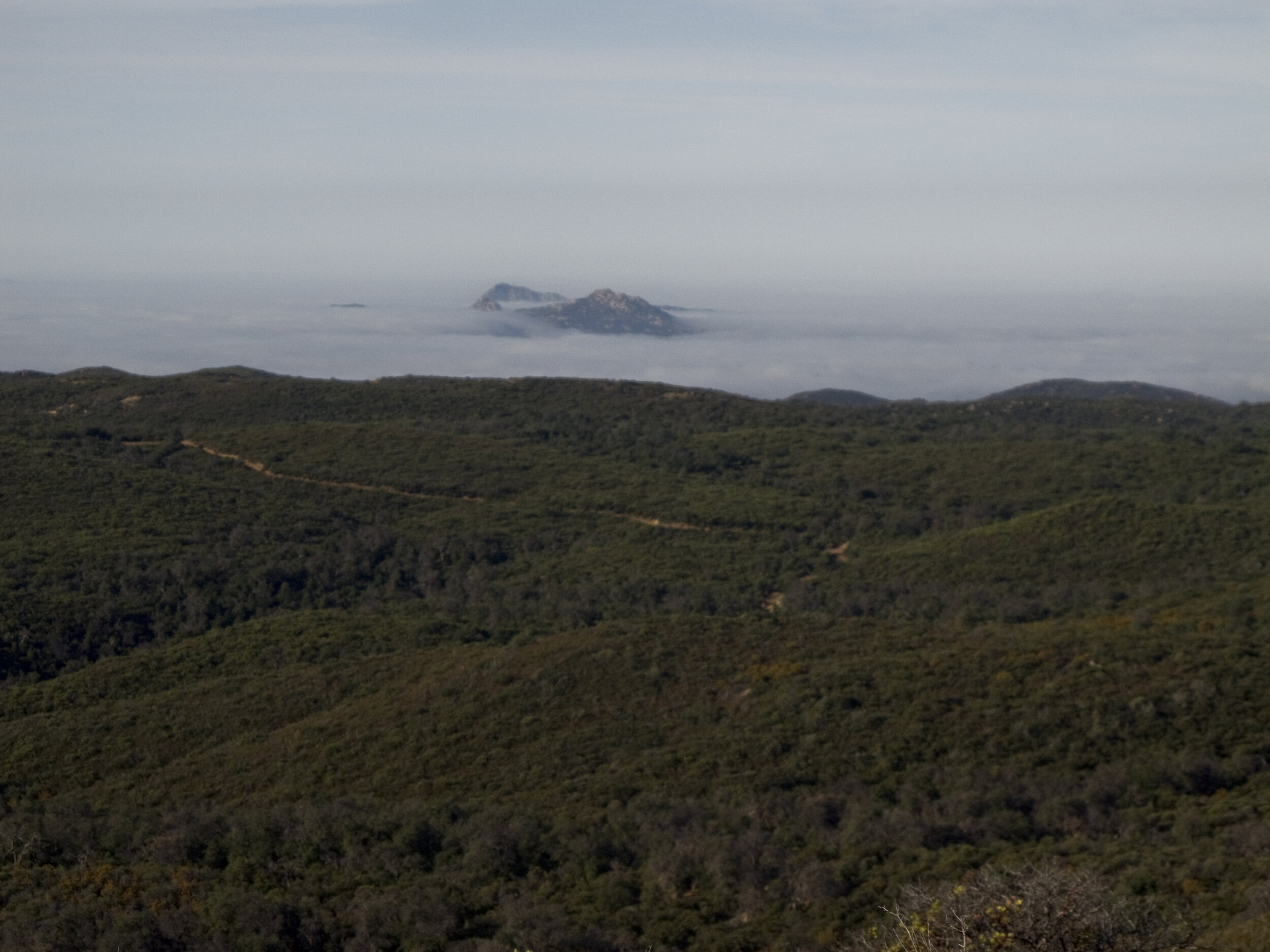 Corte Madera and Los Pinos Mountain in the distance