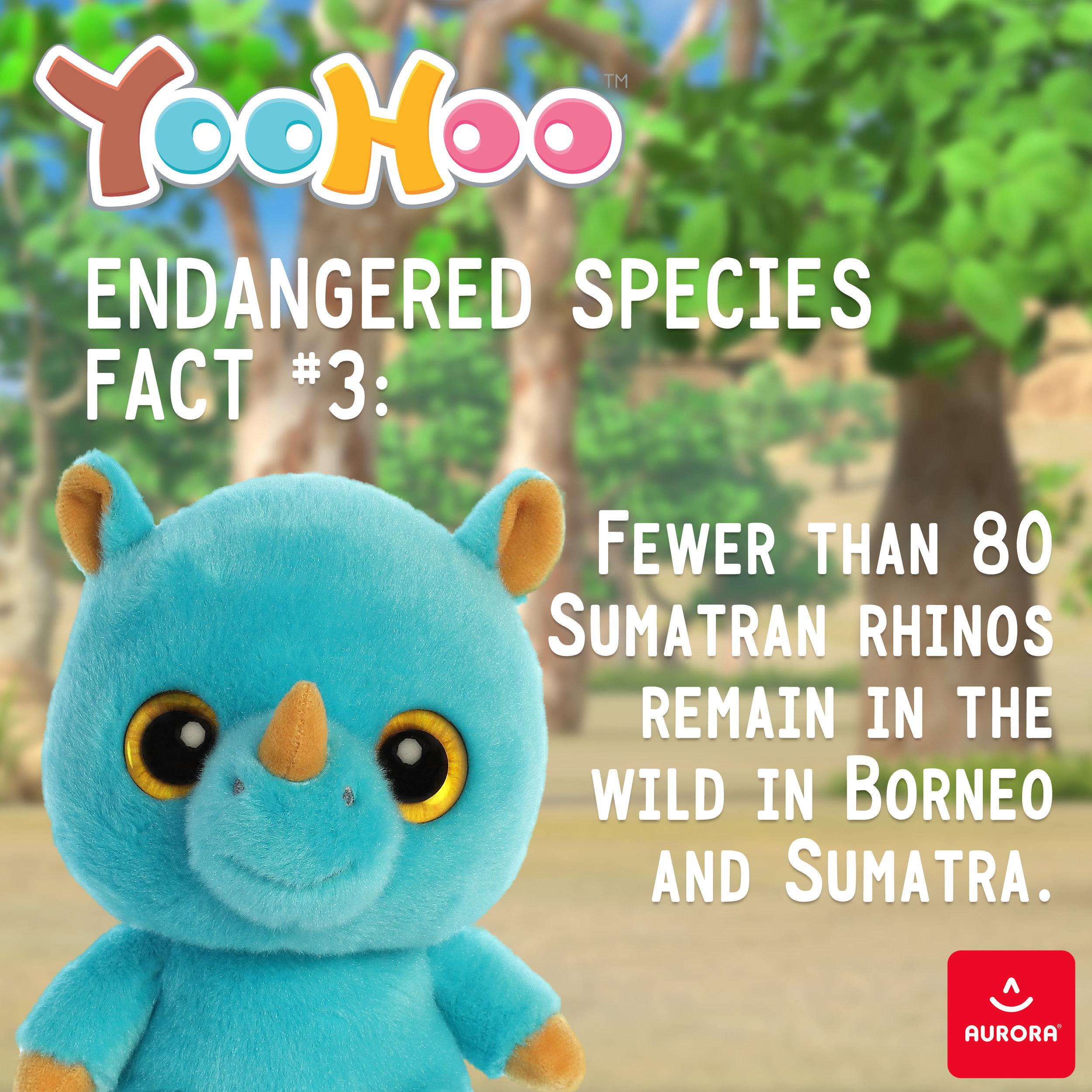 fact3.jpg