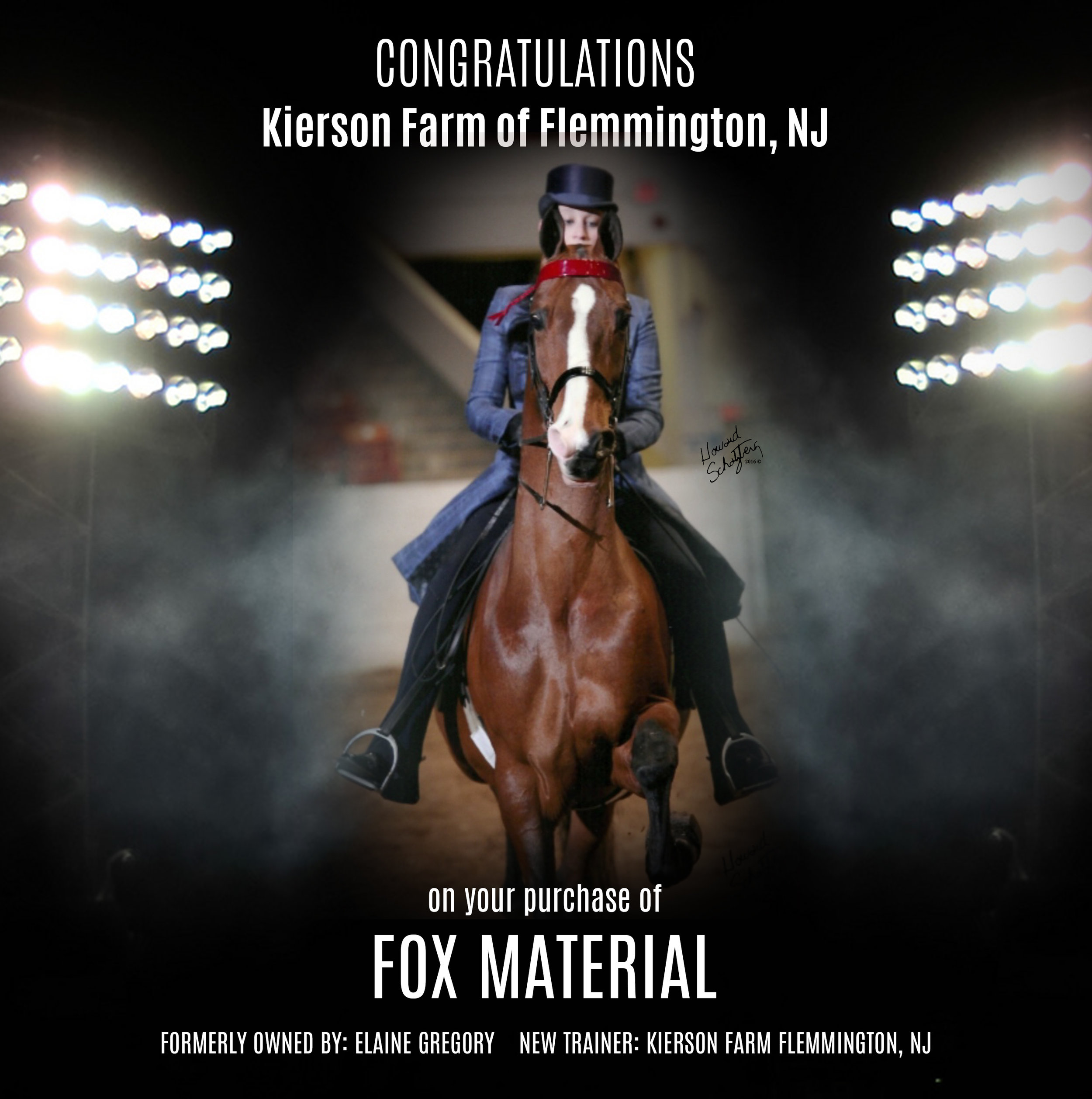 Fox Material.jpg