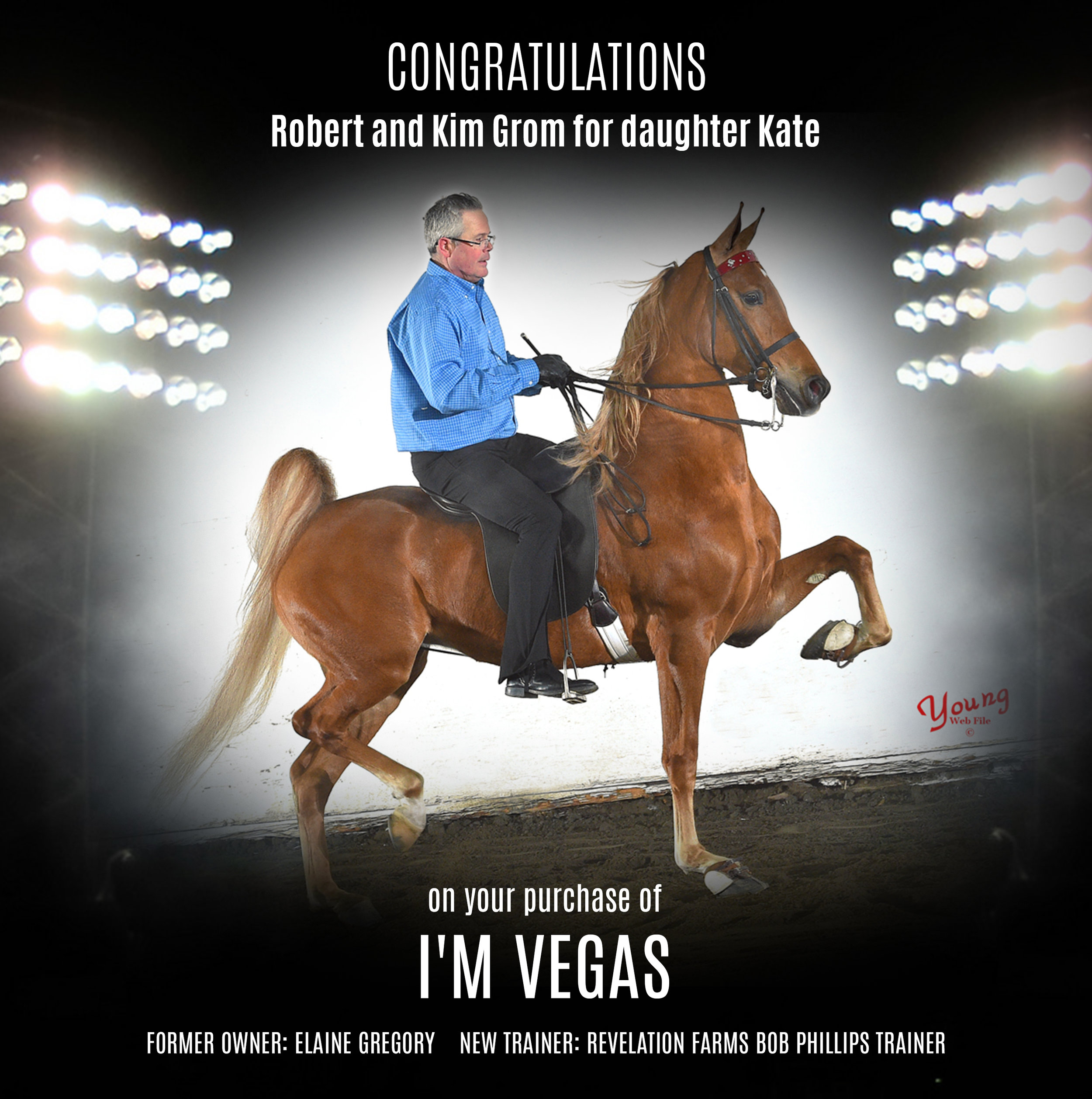 I'm Vegas.jpg