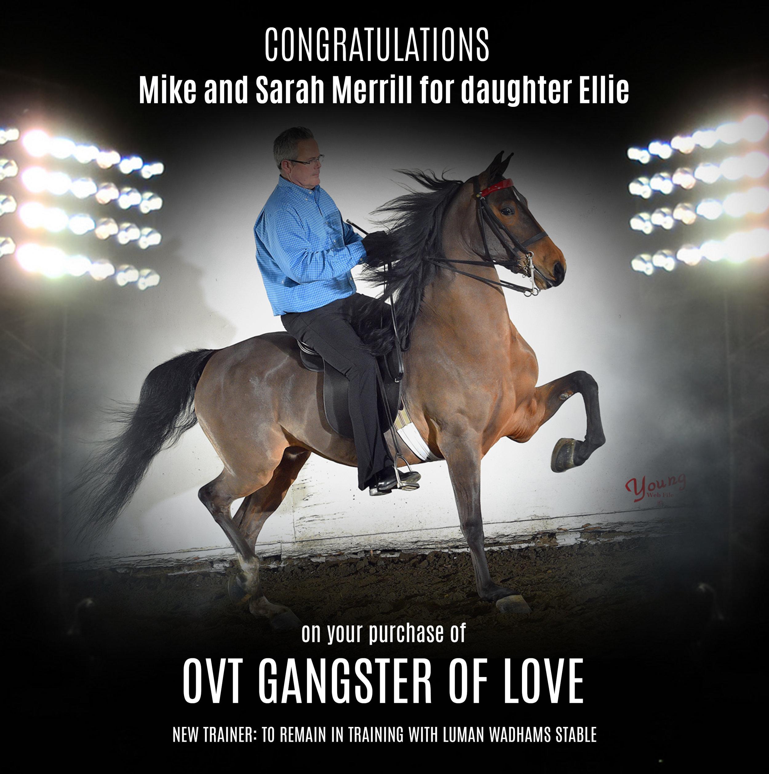 OVT Gangster Of Love.jpg